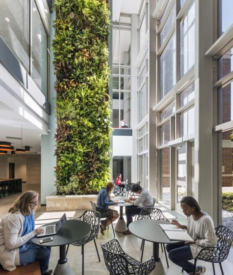 Students study at tables in atrium with two-story live plant feature wall