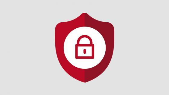 Lock with a Shield Icon