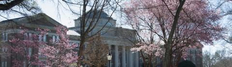 Chambers building surrounded by flowering trees