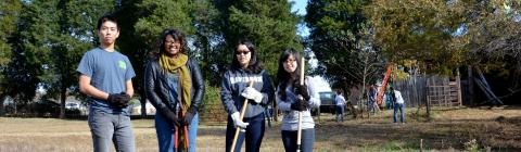 Students in a field doing community service