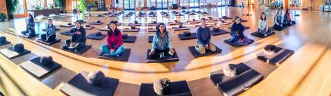 Students sit on meditation cushions