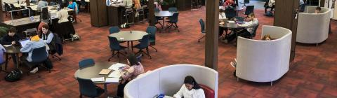 students study in library