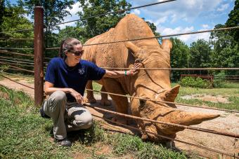 Katie Delk '06 kneels near a rhinoceros