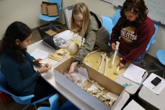 Anthropology Students Measuring Bones