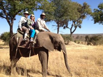 Davidson Travel Program Africa Safari 2012 Alumni on elephant