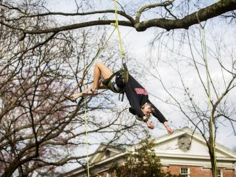 Student jumps backward from tree limb with harness