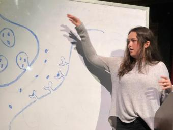 Student gives presentation while pointing to whiteboard drawing