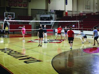 Recreational Volleyball Team Playing